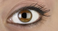 אקנטאמבה, קבוצת אורגניזמים הנמצאים במים מזוהמים, יכולים לגרום לזיהום בקרנית העין, הנפוץ בעיקר בקרב המשתמשים בעדשות מגע ובתמיסות פיזיולוגיות, המיוצרות בבית.