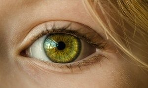 טכנולוגיה ביומטרית למעקב אחר תנועות העיניים